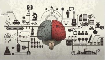 braindrawing